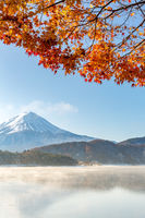 Mt. Fuji in autumn Japan