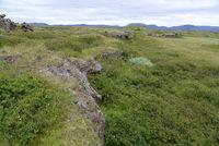 Landschaft am Myvatn, Island