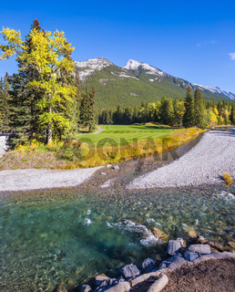 The shallow stream