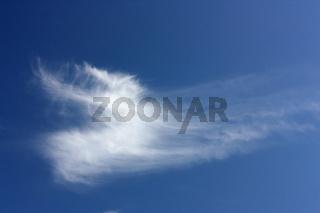 Federwolke am blauen Himmel