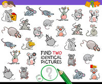 find two identical mice educational activity