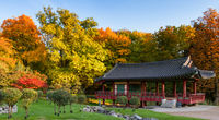 Korean park of Frankfurt in autumn