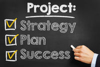 Project: Strategy Plan Success
