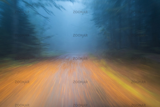 Car driving on autumnal wet road through the forest at dawn