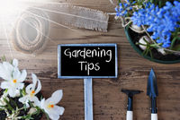 Sunny Spring Flowers, Sign, Text Gardening Tips