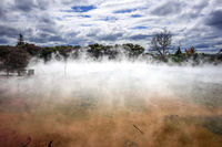Hot springs lake in Rotorua, New Zealand