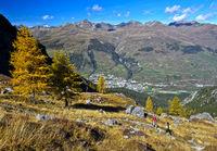 Herbst im Lischana Tal, Scuol, Unterengadin, Graubünden, Schweiz