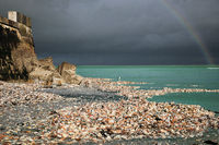 Muschelkueste, Port-en-Bessin-Huppain, Normandie, Frankreich