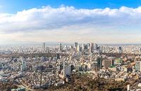 Tokyo Shinjuku skylines