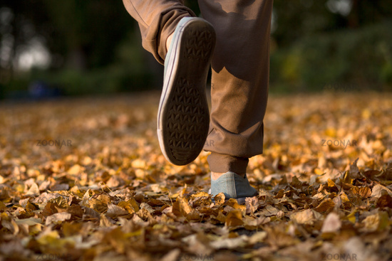 Mans legs running on dry leaves.