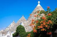 Alberobello, ITALY - Trulli di Alberobello, UNESCO heritage site