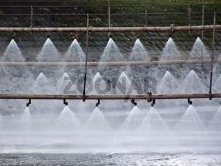Sprinkleranlage zur Bekämpfung von Algenbildung au