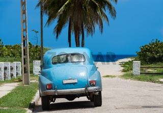 Amerikanischer blauer Oldtimer parkt nahe des Strandes unter Palmen in Varadero Cuba