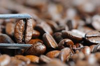 roasted coffee beans macro