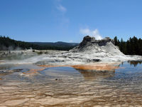 Castle Geysir im Yellowstone Nationalpark