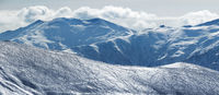 Panoramic view on slope for freeriding with traces from skis, snowboards and snowy mountains