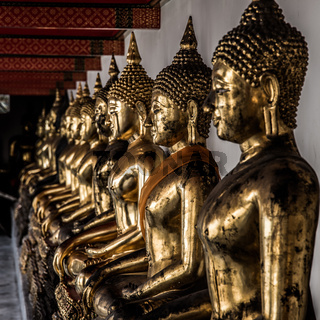 The row of golden Buddha statues