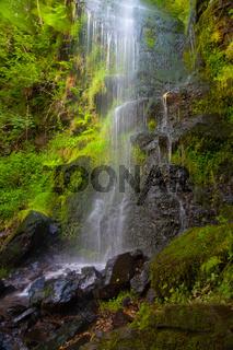 Mallyan Spout waterfall at Goathland,England