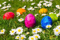Painted easter eggs in grass with daisies