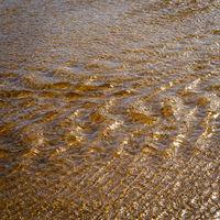 Tannin Water Background