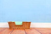 Empty animal basket