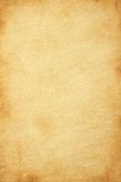 Vintage paper texture. High resolution grunge background.