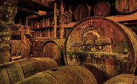 Wine barrels in old cellar