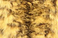 snow leopard textured pelt