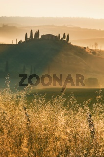 Scenic view of typical Tuscany landscape