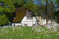 Frühling in Dahlhausen