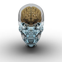 Glass Skull with Brain