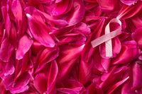 Pink Breast Cancer Ribbon.