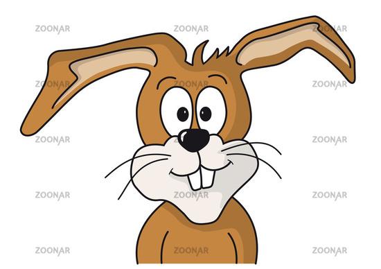 Rabbit face drawing