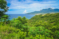 Lush tropical landscape of Nusa Teggara Flores Island