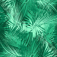 Green palm tree branches on abstract background.