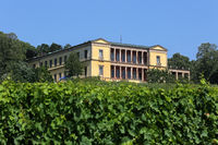 Villa Ludwigshöhe bei Edenkoben