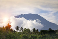 view through the jungle with palm trees on a volcano  Agung in clouds. Bali