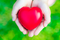 Female hands giving red heart on green background