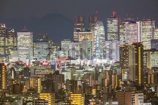 Tokyo Shinjuku with Fuji