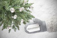 Christmas Tree, Glove, Adventszeit Means Advent Season, Snowflakes