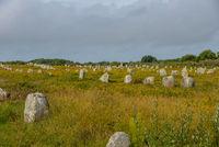 Steinfeld Menhire von Carnac Bretagne Frankreich