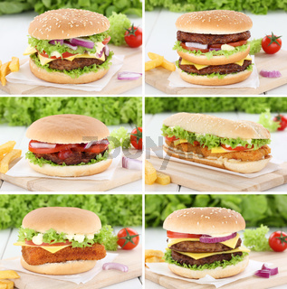 Hamburger Sammlung Collage Cheeseburger Zwiebel Fleisch Tomaten Salat