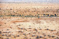 Landschaft im Kruger Nationalpark, Südafrika, landscape at Kruger National Park, South Africa