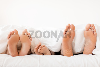 bare soles of happy family feet in bed at home
