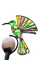 geziert mit dem Kolibri in Otavalo Ecuador