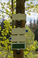 empty tourist signpost in forest