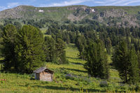 An old log cabin in a coniferous forest in Altai Krai mountains.
