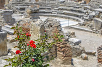 Rose bush and ruins of ancient town on background