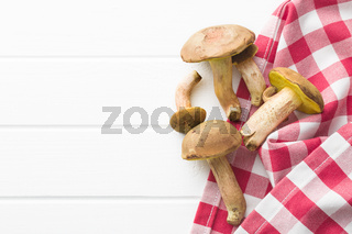 Fresh woodland fungi with boletus mushrooms.