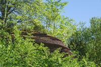 Rock formation in a green leafy woodland in summer